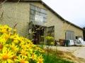 werk-von-pro-lehm-in-langballig-frontansicht-mit-gelben-blumen-01-kleines-format.jpg